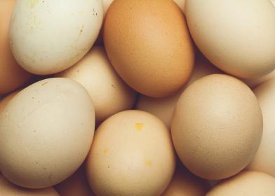 Another Salmonella outbreak linked to Spanish eggs
