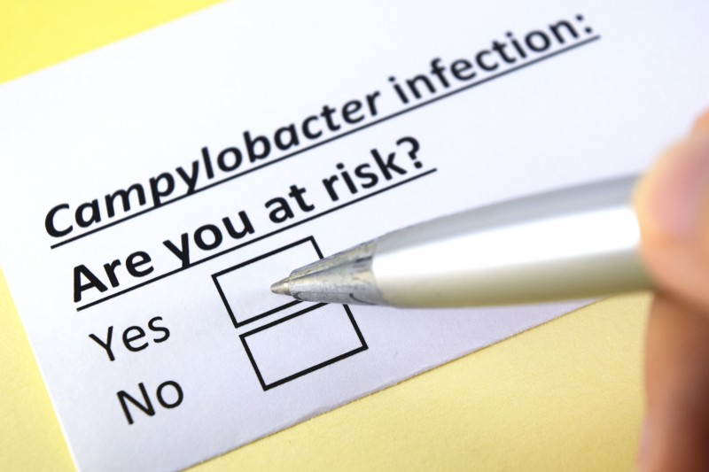 17% decline in Campylobacter